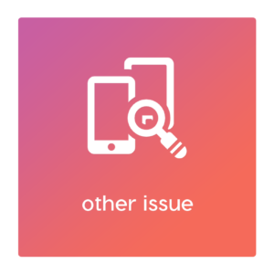 other issue